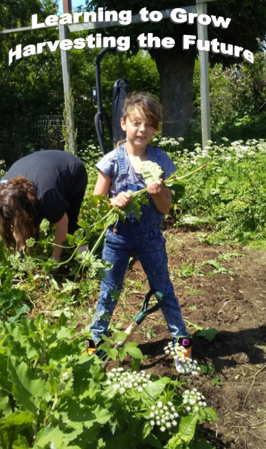 There's much work to be done, but everyone pulled together and created a wonderful garden with many vegetables!